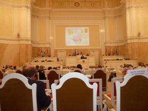 Mariinski Palace conferne hall